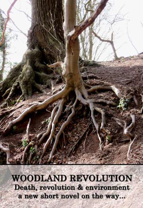 woodlandrev