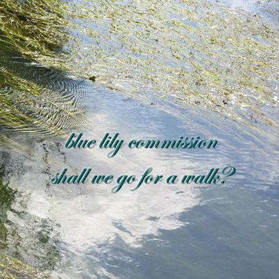 shall we